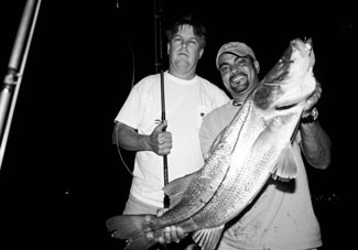 biscayne,fishing guide,charters,snook,tarpon,trout,bonefish,backcountry,flats,shallow water,fishing charters