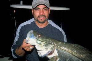 miami biscayne fishing guide charters night fishing snook tarpon trout bonefish permit miami snook fishing sport fishing